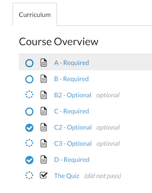 optional_lessons_course_platform.png